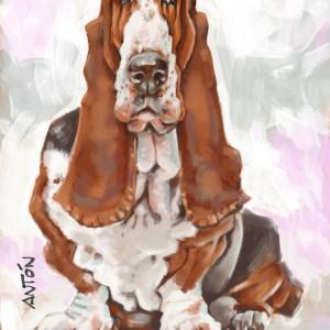 Caricaturas-girona-gerona de Basset Hound